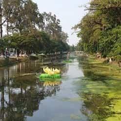 از غرق شدن کشتی در آب های اندونزی تا گم شدن در معابد کامبوج