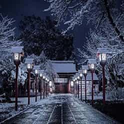 زیبایی جادویی معابد شهر کیوتو از نگاه دوربین یک عکاس