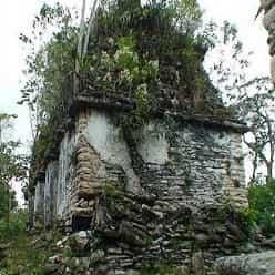 پادشاهی باستانی گمشده مایاها در زمین یک چوپان (گلهدار) کشف شد