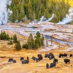 چگونه بدون خارج شدن از خانه از پارک ملی آمریکا بازدید کنیم!