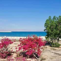 بهترین مکانهای گردشگری در جزیره کیش